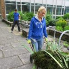 News Image:VIDEO: Wellness Garden project build will help brain injury patients